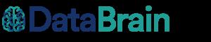 data brain
